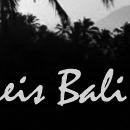 Verslag van reis naar Bali    klikken